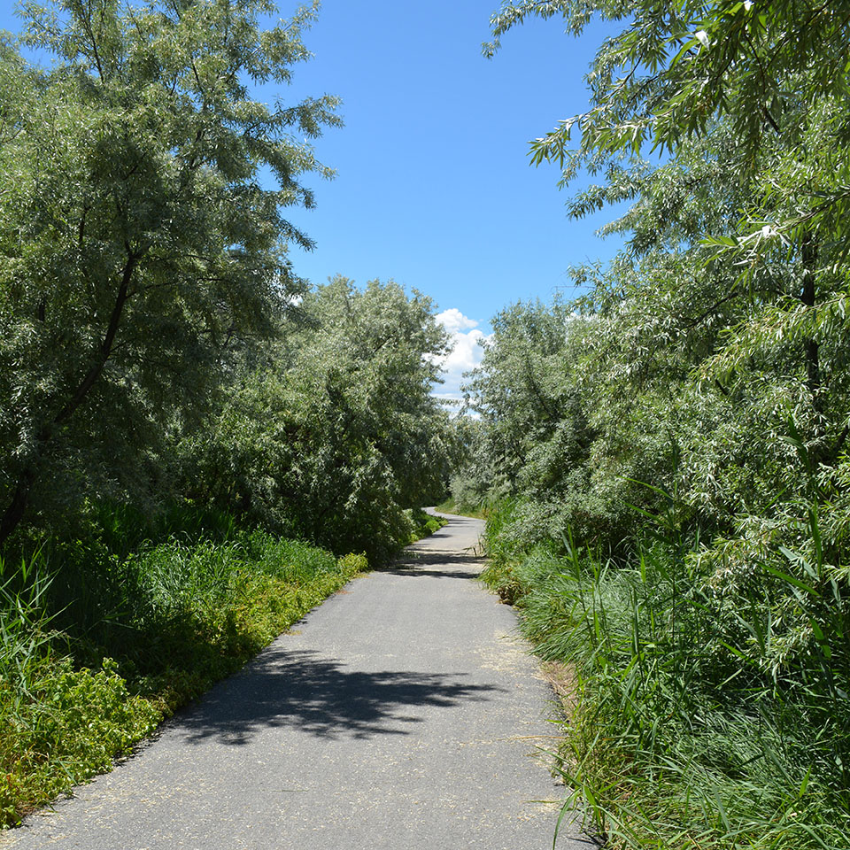 Jordan Willows Park and trail